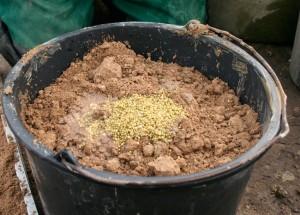 Dünger zum Substrat geben