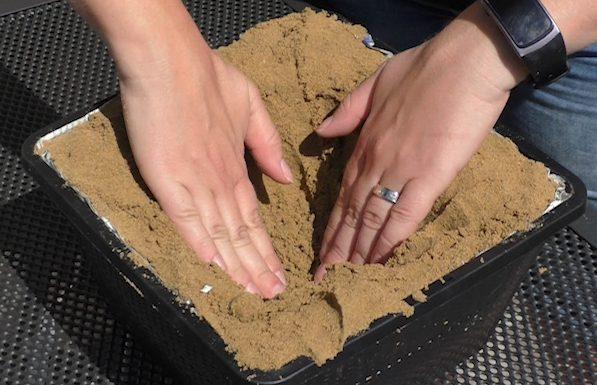 in der Mitte des Pflanzkorbes wird ein Loch vorbereitet